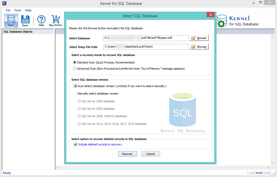 check the box to detect the database version automatically