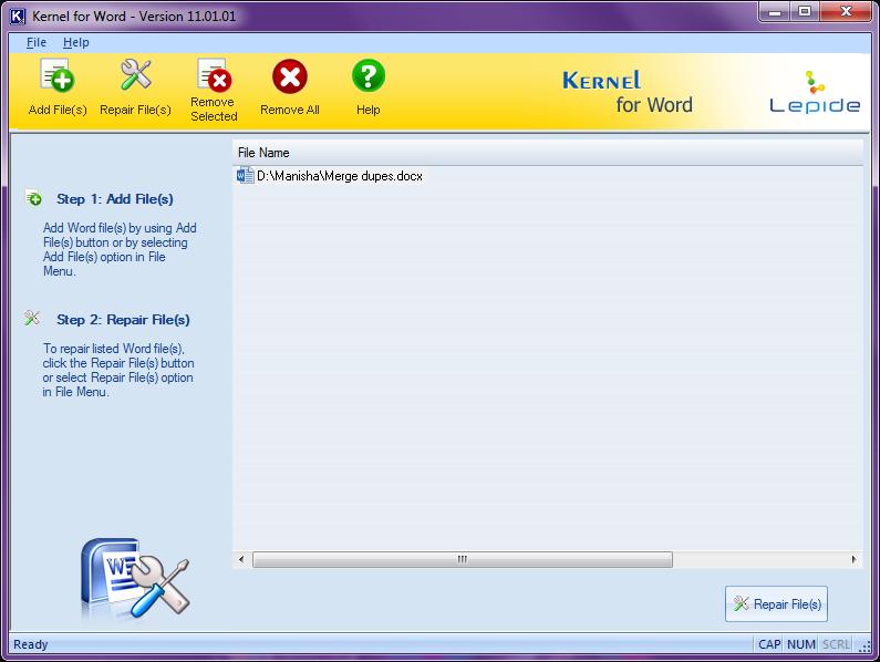 Repair Files