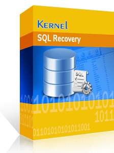 Kernel for SQL Recovery