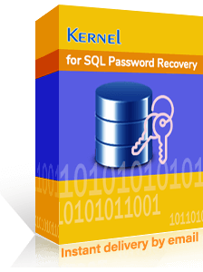 Kernel SQL Password Recovery