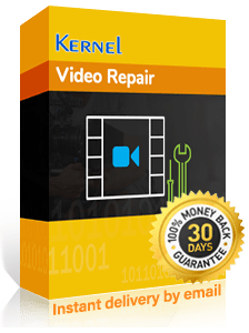 Kernel Video Repair Software