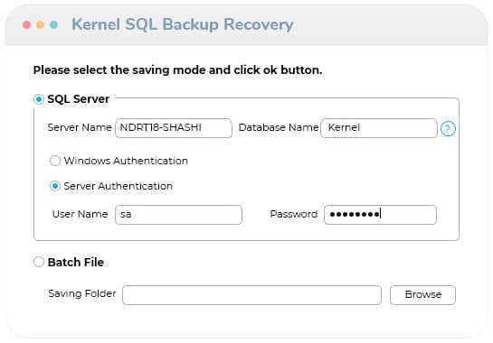 Save selected SQL Backup database file