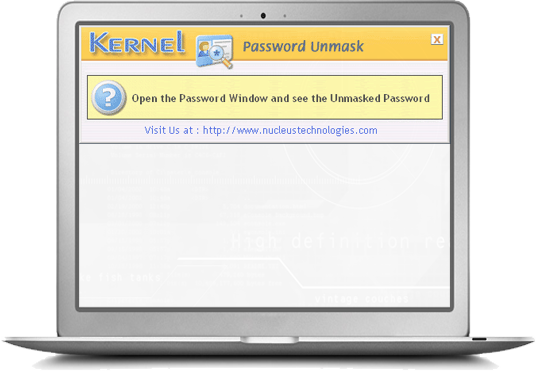 Kernel Password Unmask